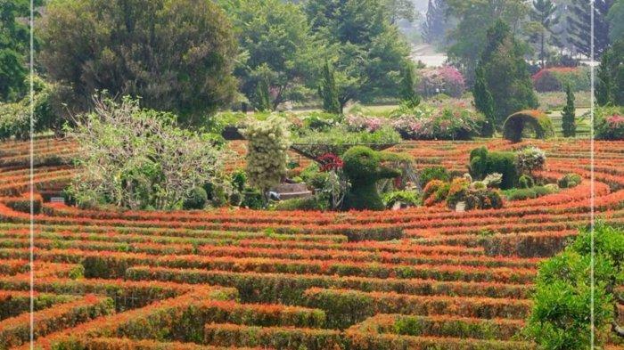 Maze Garden di Taman Bunga Nusantara