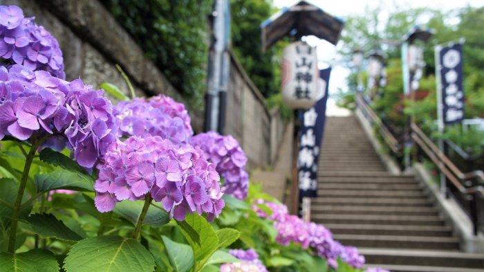 Pemerintah Jepang Desak Wisatawan Tidak Bepergian Dulu Selama Wabah Virus Corona