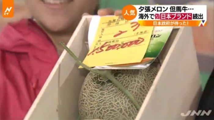 Luar Biasa, Harga 2 Buah Melon Jepang Ini Setara 1 Mobil! Ternyata, Ini Istimewanya