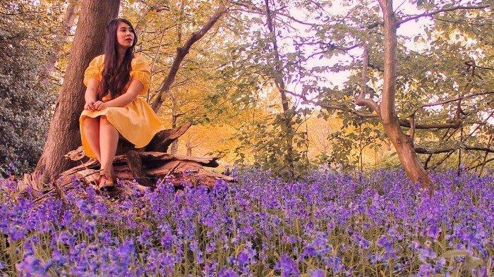 Menikmati keindahan bunga Bluebell di Inggris