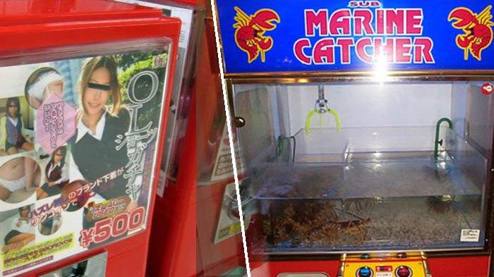 6 Hal Teraneh yang Dijual di Mesin Otomatis di Jepang, Ada Celana Dalam hingga Lobster