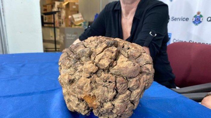 5 Tahun Dicuri, Meteorit Berusia Lebih dari 4 Miliar Tahun Ini Dikembalikan ke Pemiliknya