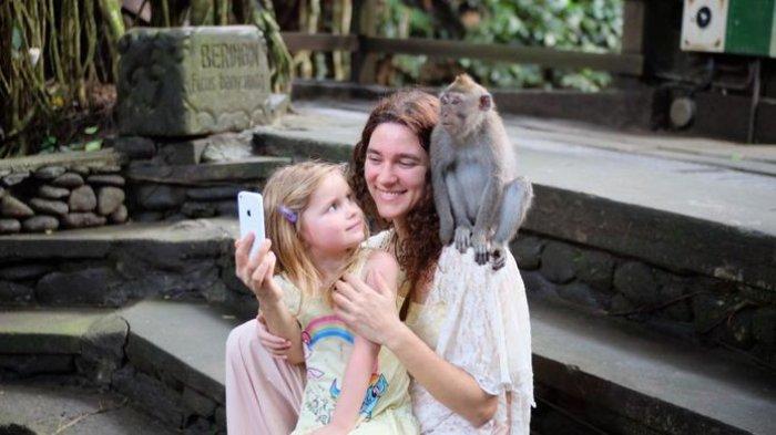 Monyet di Monkey Forest, Ubud, Gianyar, Bali, naik ke kepala wisatawan.