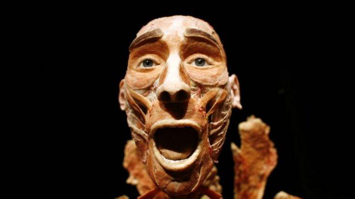 Potongan Kepala sampai Boneka Berisi Roh Jahat, 5 Museum Paling Aneh dan Menakutkan di Dunia