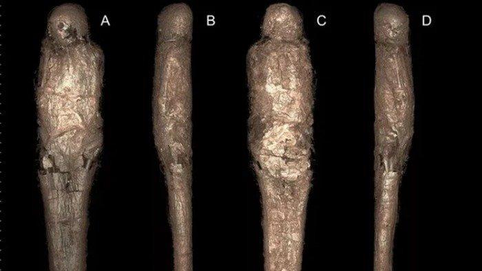 Kejutkan Dunia Arkeologi, Tim Peneliti Temukan Mumi Mesir Kuno yang Terbungkus Lumpur