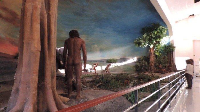 Museum Manusia Purba Dayu Akan Segera Dibuka dengan Kapasitas Pengunjung 1.000 Orang per Hari
