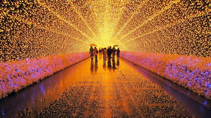 Jutaan Lampu Led Ada Di Nabana No Sato Taman Bunga Spektakuler Di Jepang Tribun Travel