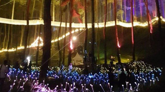 Nonton Konser Jazz di Tengah Hutan Pinus Cikole Lembang, Ada Tompi hingga Teza Sumendra