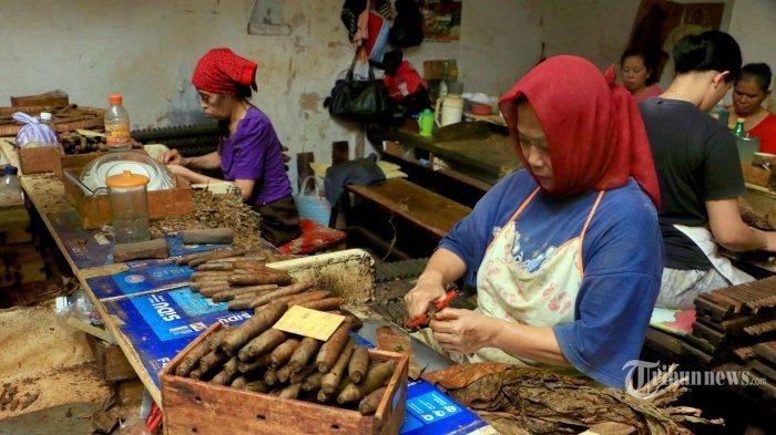 TRAVEL UPDATE: Berkunjung ke Pabrik Cerutu Rizona Temanggung yang Berdiri Sejak 1910