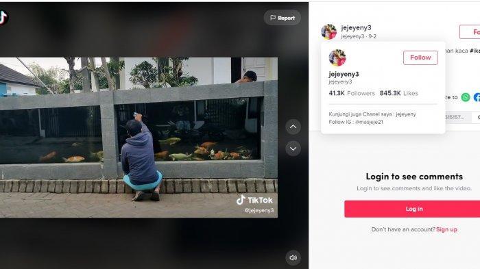 Viral TikTok, Pria di Malang Ini Buat Pagar Rumah dari Kolam Ikan Koi