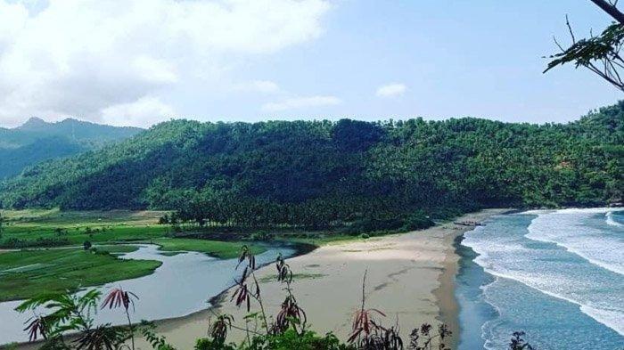 Pantai Kebo, Tempat Wisata di Trenggalek dengan Pemandangan Rerumputan Hijau Dekat Laut