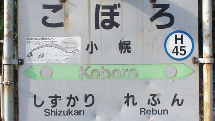 Stasiun Kereta Ini Dijuluki Paling Terpencil di Jepang, Lokasinya Sulit Diakses dengan Jalan Kaki