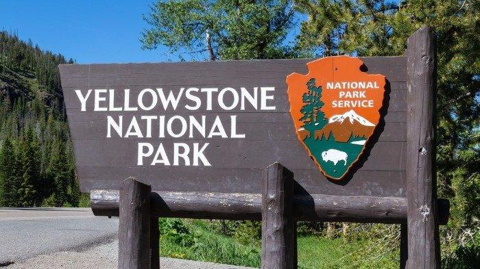 26 Fakta Unik Yellowstone, Taman Nasional Pertama di Dunia yang Masuk Warisan Dunia UNESCO