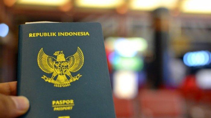 Tata Cara Membuat Paspor untuk Anak, Siapkan Berkas-berkas Ini Agar Nanti Tidak Ribet di Imigrasi