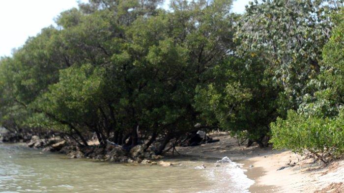 TRAVEL UPDATE: Pantai Putri Klayar, Surga Tersembunyi di Lamongan untuk Liburan Akhir Pekan