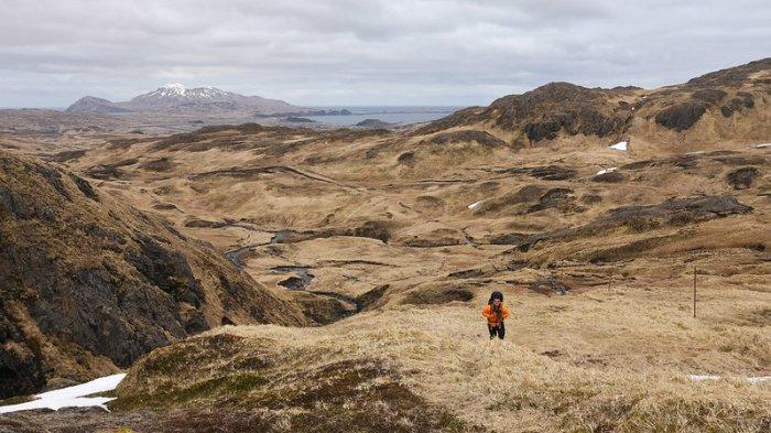 Pemandangan Pulau Adak
