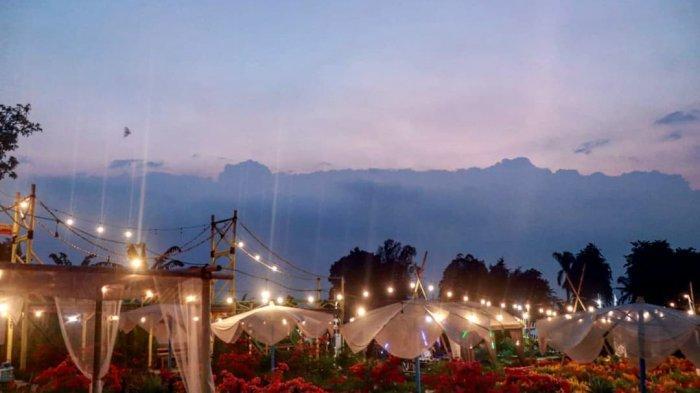 Pemandangan Tapos Garden di Malam Hari