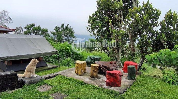 Ingin Camping tapi Takut Tiba-tiba Hujan? Berkemah Saja di Penginapan Unik BlacLava Hostel
