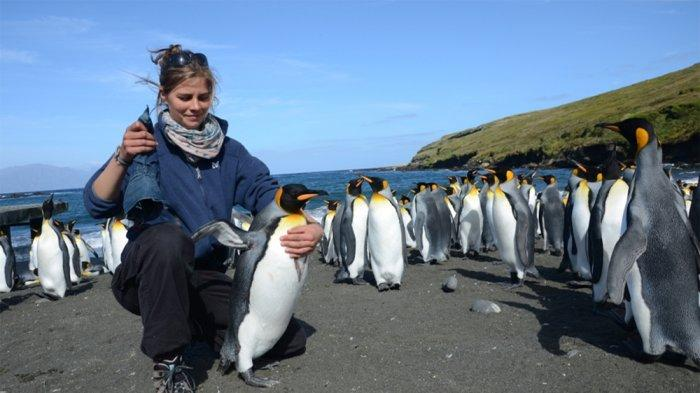 3 Hewan Asli Dilindungi yang Harus Traveler Jumpai Saat Liburan ke Selandia Baru