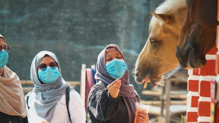 Pengunjung yang memberi makan kuda di  Biestro Indonesia Cafe