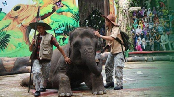 3 Sarana Rekreasi di Taman Safari Prigen, Bikin Momen Liburan Lebih Seru dan Menyenangkan