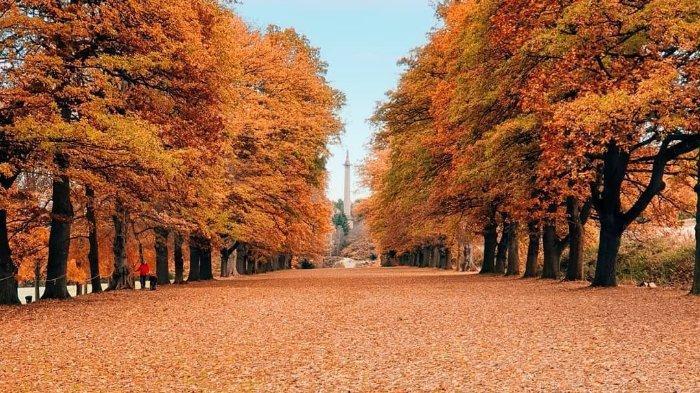 6 Pesona Musim Gugur di Inggris Raya yang Bisa Dinikmati Wisatawan