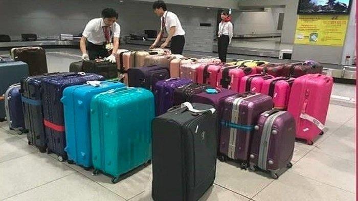 Petugas bagasi pesawat di Jepang mengatur koper penumpang sesuai warna