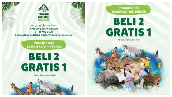 Promo Lebaran Harga Tiket Masuk Taman Safari Prigen Diskon 15 Persen, Syaratnya Gampang Banget