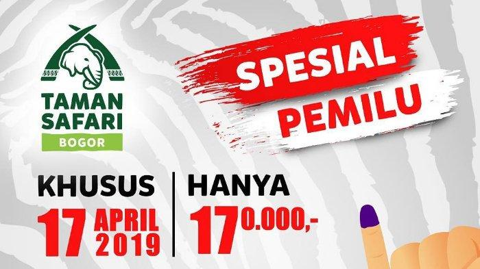 Promo Taman Safari Bogor Spesial Pemilu, Tiket Masuk Cuma Bayar Rp 170 Ribu