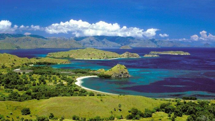 4 Pulau di Indonesia Ini Miliki Penghuni Bukan Manusia, Berani Berlibur ke Sana?