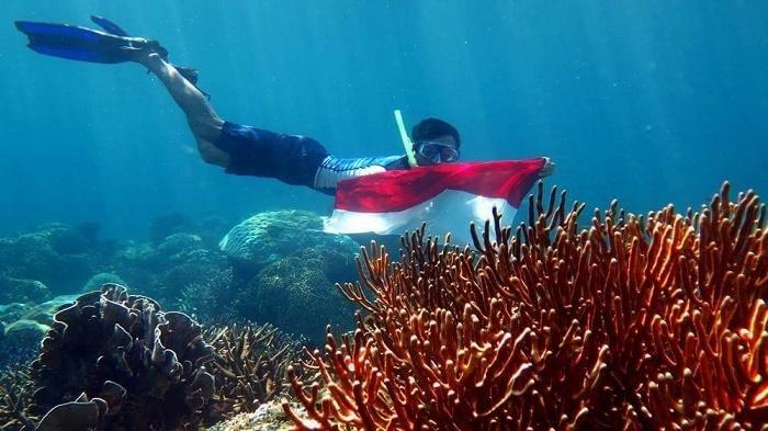 Wisata Kalsel-Pencinta Snorkeling dan Diving, Inilah Pulau Payung-payungan yang Menawan