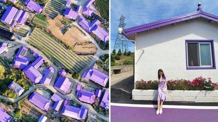 Uniknya Pulau Ungu, Tempat Wisata Instagramable di Korea Selatan yang jadi Primadona Baru
