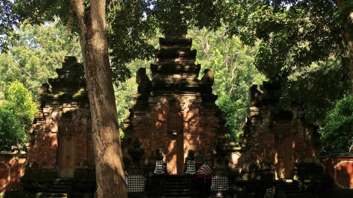 Hutan Angker Di Indonesia, Berani Datang?