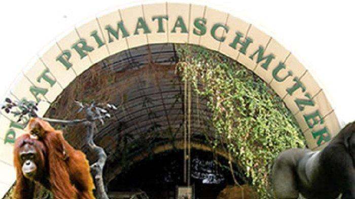 Pusat Primata Schmutzer, fasilitas andalan di Taman Margasatwa Ragunan.
