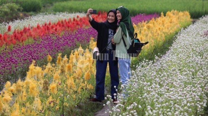 Liburan ke Rainbow Garden Gowa, Ini 3 Spot Instagramable Favorit Wisatawan