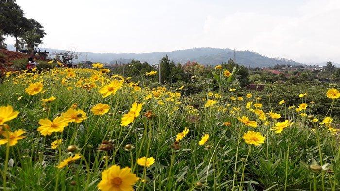 Jam Buka dan Harga Tiket Masuk Rainbow Garden Lembang Terbaru 2021