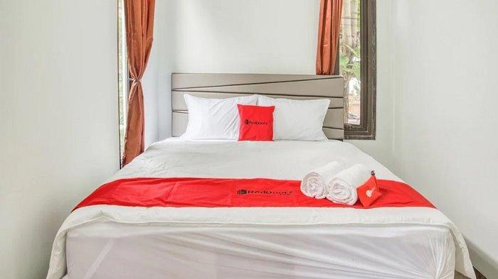 Daftar Hotel Bintang 2 Dekat Taman Margasatwa Ragunan, Fasilitas Lengkap Mulai Rp 146 Ribuan