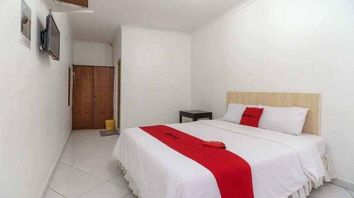 5 Hotel Murah Dekat Taman Margasatwa Ragunan, Fasilitas Lengkap dan Nyaman