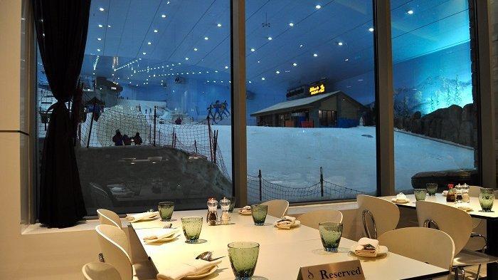 Restoran di Dubai Tawarkan Sensasi Sarapan Bersama Penguin, Seperti Apa?