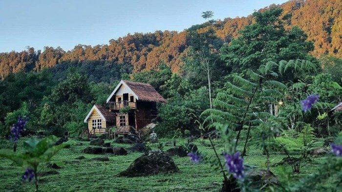 Mau Wisata Antimainstream, Coba Camping di Rumah Ladang Simelir Sumatera Utara