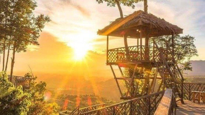 Harga Tiket Masuk Rumah Pohon Habitat, Tempat Camping Seru di Dataran Tinggi Langkat