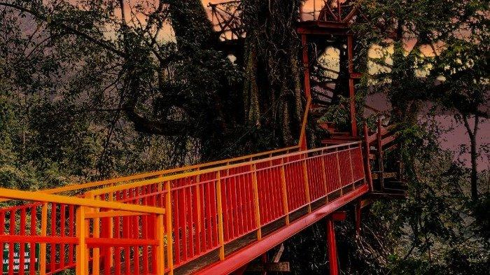 Rumah Pohon, satu spot instagramable di Curug Ciherang
