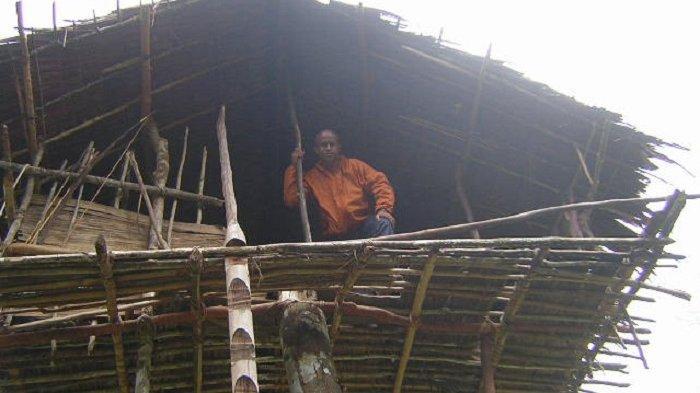 Uniknya Suku Korowai dari Papua, Tinggal di Rumah Pohon yang Tingginya Capai 50 Meter