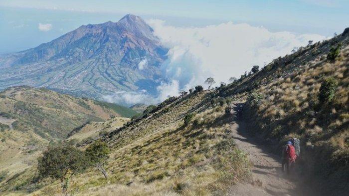 Susul Thekelan, Jalur Pendakian Gunung Merbabu via Suwanting dan Wekas Dibuka Kembali