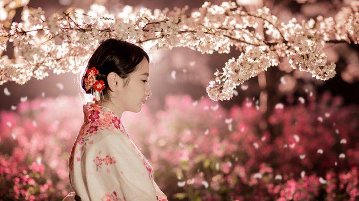 sakura jepang