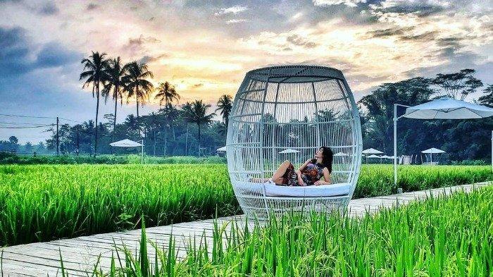 Rute, Jam Buka dan Harga Tiket Masuk Svargabumi Borobudur Terbaru 2021