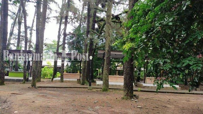 Bersantai Sejenak di Hutan Pinus Mentaos Banjarbaru untuk Liburan Akhir Pekan