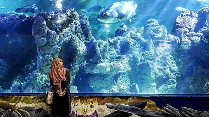 Salah satu akuarium di Sea World Ancol.