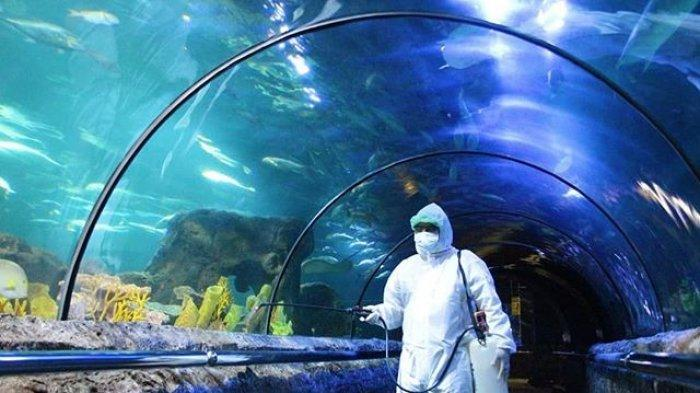 Penyemprotan disinfektan di kawasan SeaWorld Ancol.
