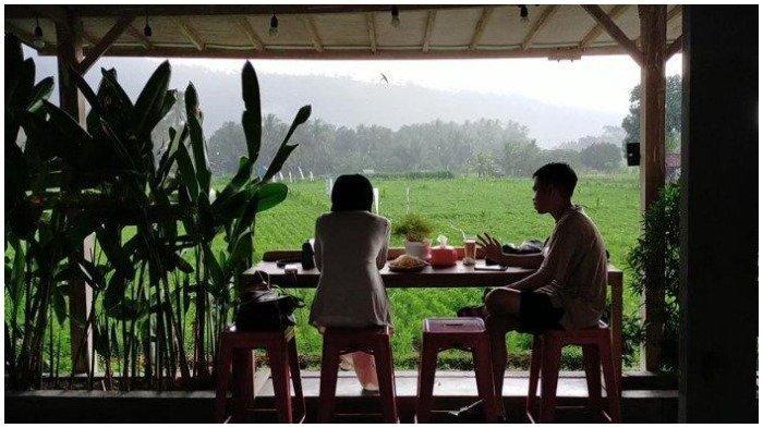 Pengunjung menikmati kopi sembari melihat hamparan sawah yang hijau di Sedjiwa Kopi, Lombok, NTB
